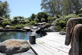Natural Pool with Water Feature
