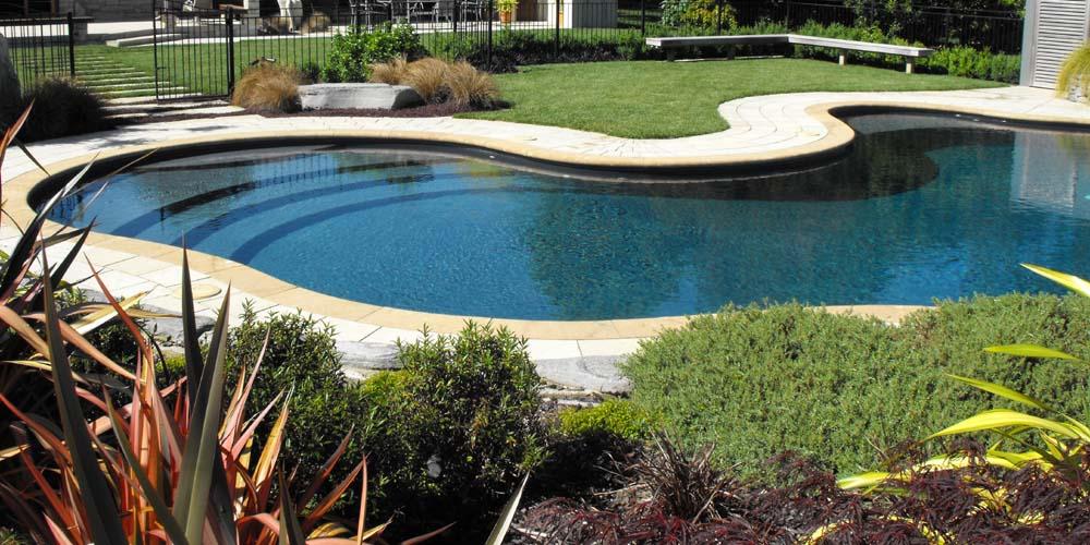 Kidney Shaped Pool Waikato